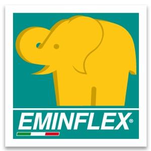 Eminflex300