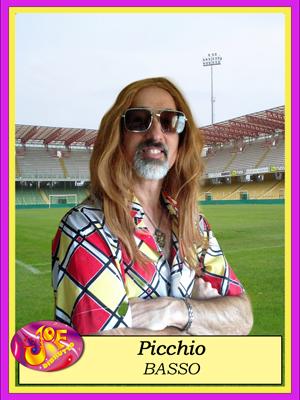 PICCHIO1_copy